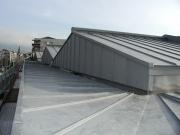 <h5>Collège St-Claire, Vevey : Toiture et façades en zinc prépatiné</h5>